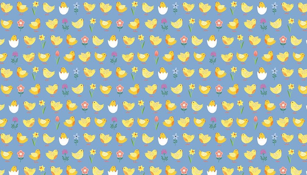 2191_B_Chicks